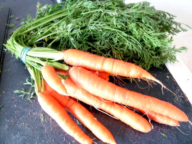carottes-fanes-et-panais-aux-olives