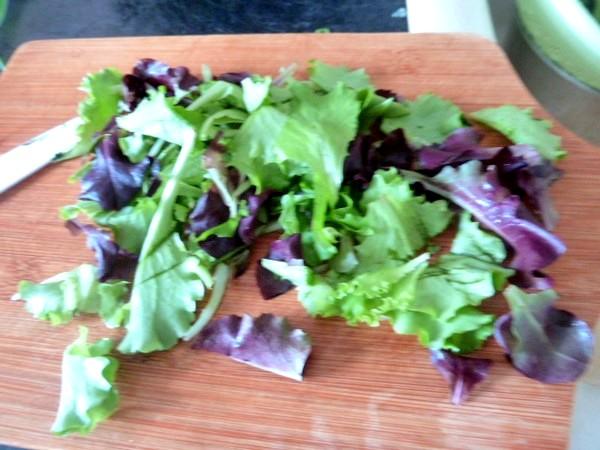 salade-verdure-piquante-jeunes-pousses