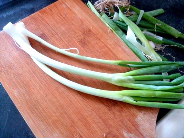 salade-verdure-piquante-cebetes