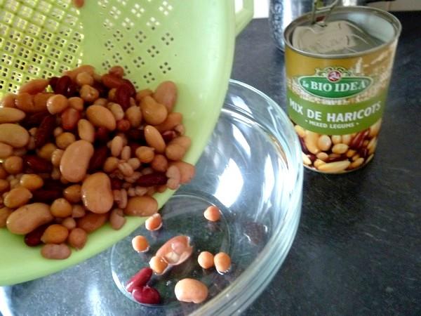 falafels aux haricots graines de lin persil
