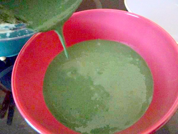 celeri remoulade vegan spiruline creme verte