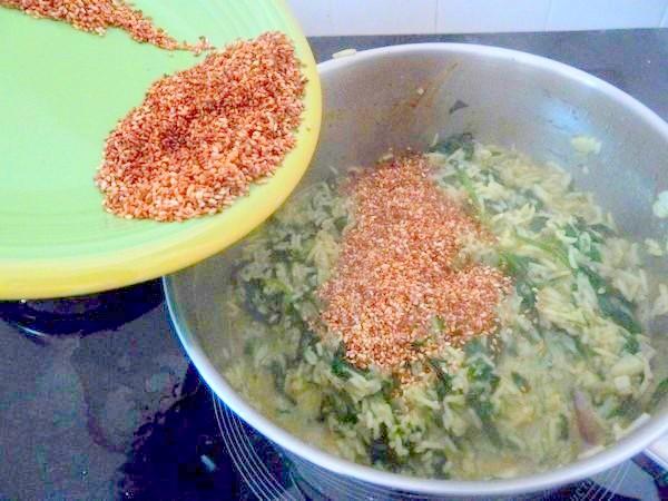 riz pilaf aux epinards melange graines