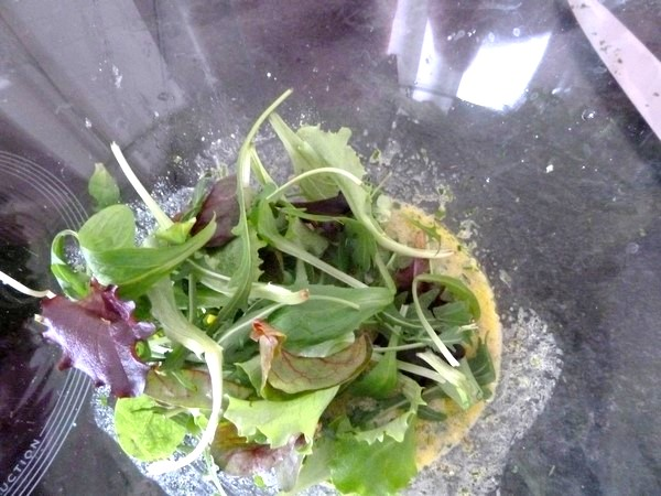 feuilles salade pamplemousse chinois melanger
