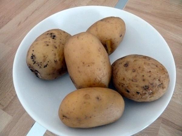 courgettes patates et crème cajou